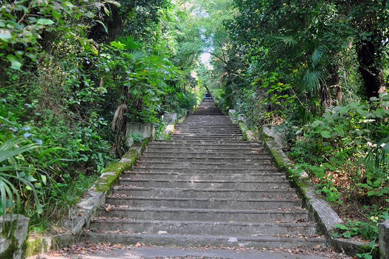 Развитие территории турбазы «Южная» в микрорайоне Хоста