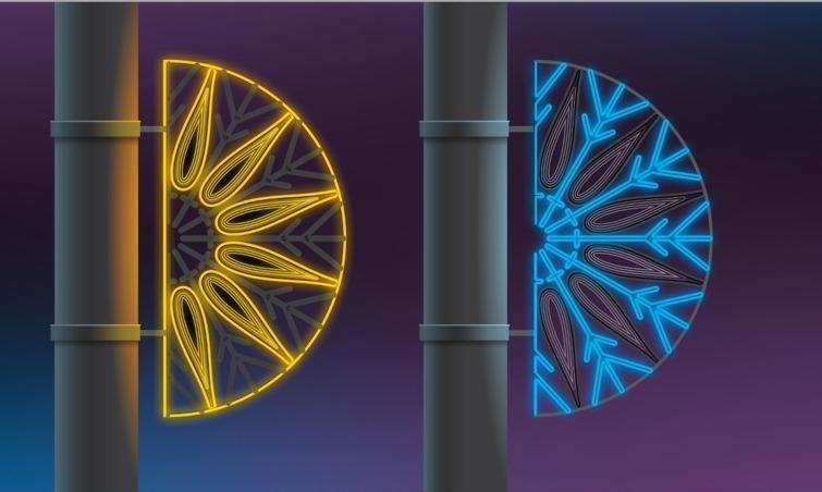 В Сочи планируют установить универсальные светодиодные конструкции