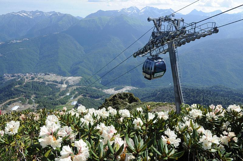 Из горнолыжных курортов в Сочи планируют создать единый горный кластер